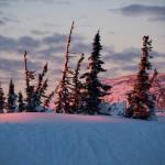 Фотографии зимних пейзажей Валерия Пешкова