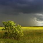 фото пейзажи Галины Хвостенко