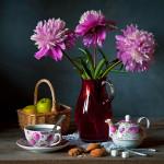 фото натюрморты Александра Щербикова