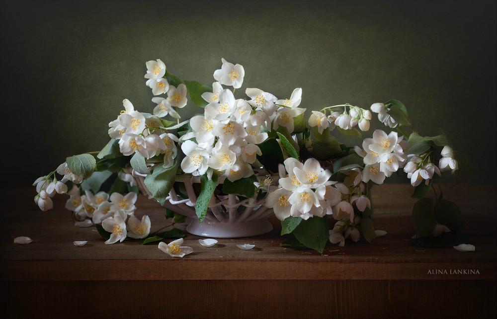 Натюрморт с тюльпанами 5