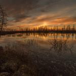 фото тундры России Камиля Нуреева