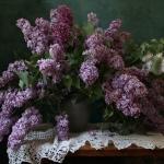 натюрморт с цветами Марины Филатовой