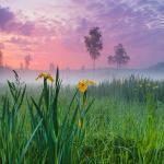 удивительные пейзажи России Александра Федосова