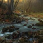 поры года в пейзажах Адыгеи Сергея Скорова