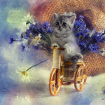 кошачий натюрморт Натальи Кузнецовой
